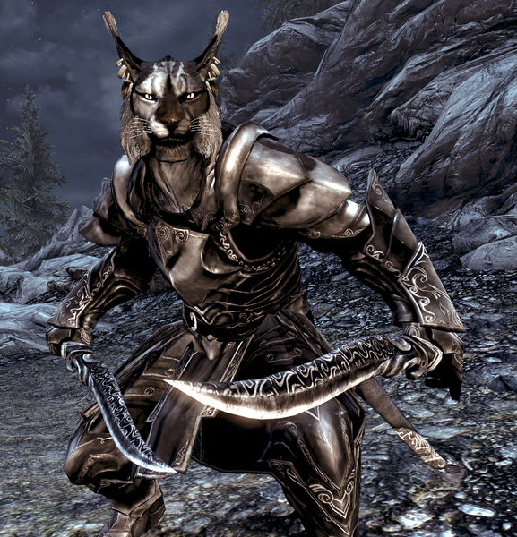 File:Khajiitman.jpg
